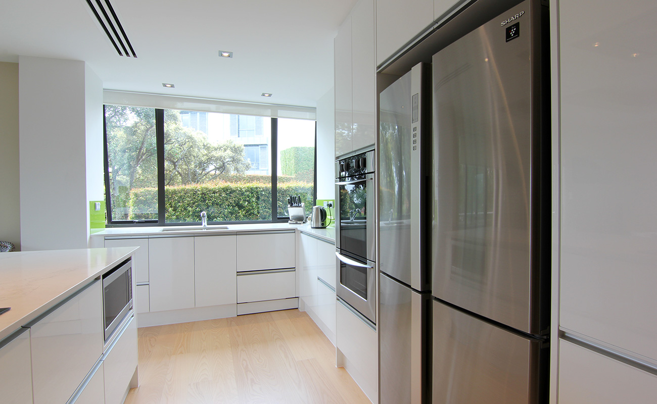Fully Renovated Apartment Kitchen