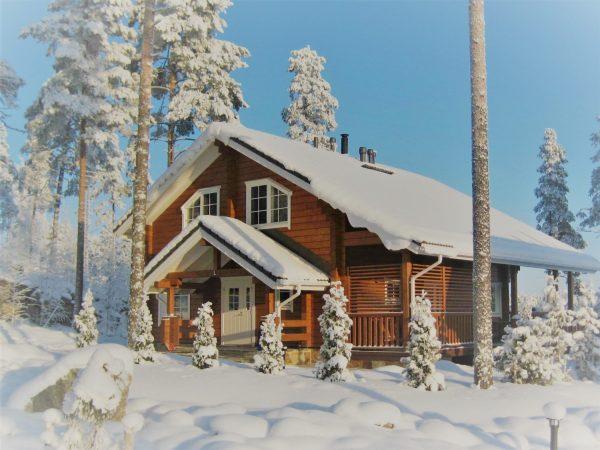 dom zimoy