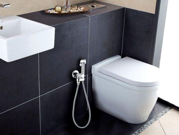 gigienicheskij dush