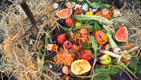 kompost iz othodov2