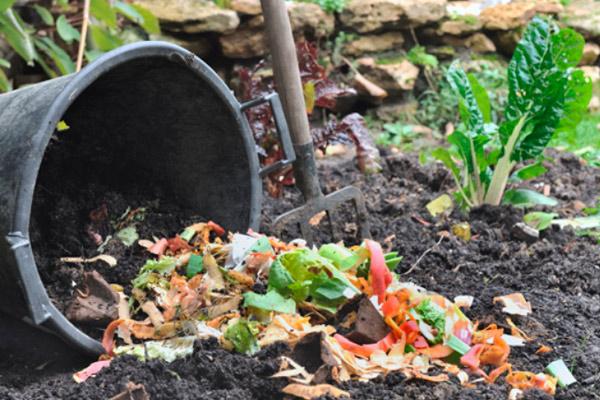 kompost iz othodov3