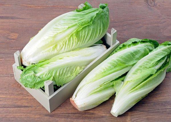 ranniy salat3