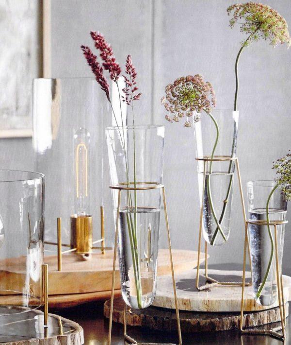 zveti v vaze11
