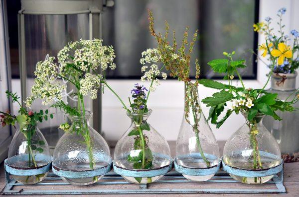 zveti v vaze14