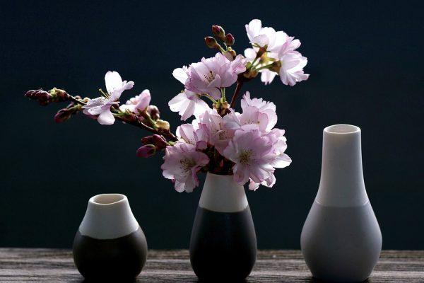 zveti v vaze2