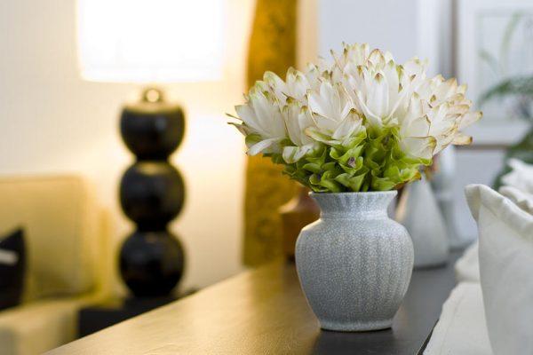 zveti v vaze5 1