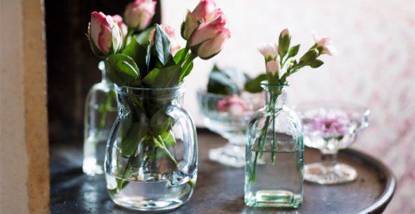 zveti v vaze9