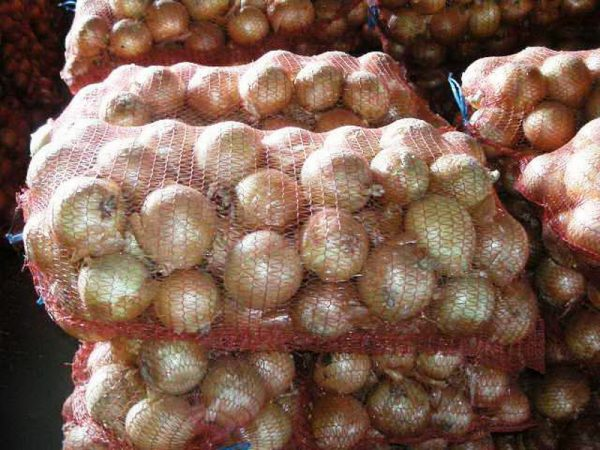 onion9