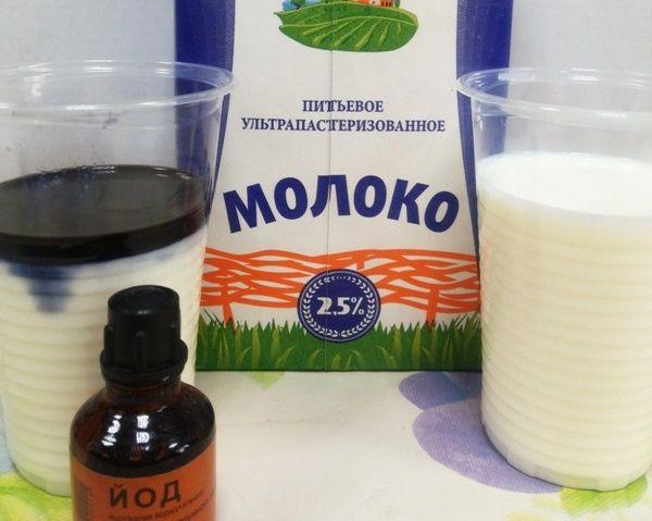 moloko yod dlya ogurzov5