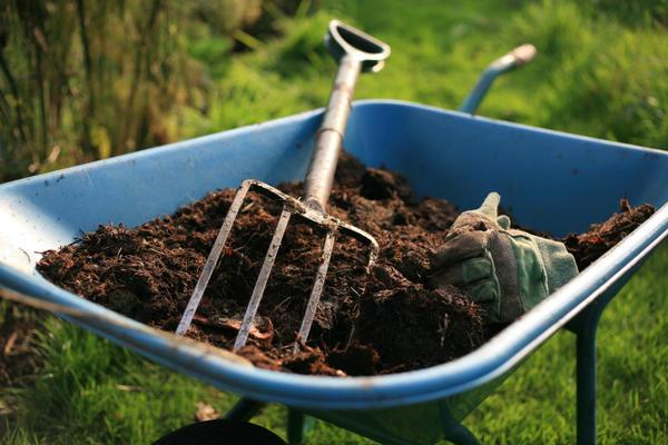 kak bistro sdelaty kompost