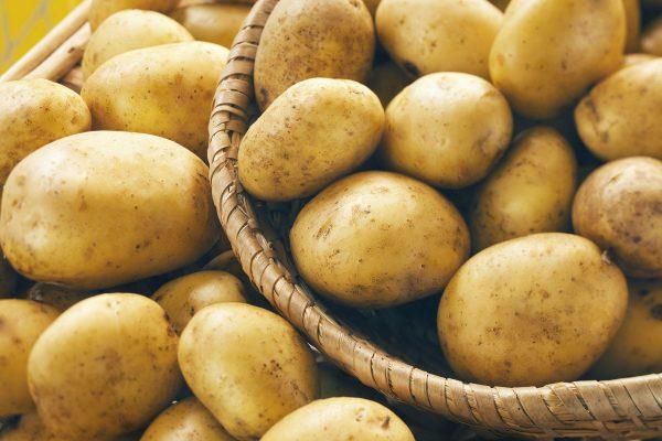 Пришла пора копать картошку! Делимся опытом уборки второго хлеба