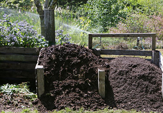 kompost zalozhity