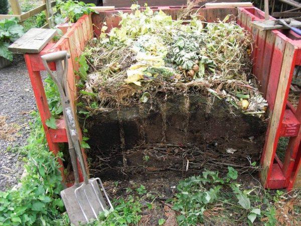 kompost zalozhity4