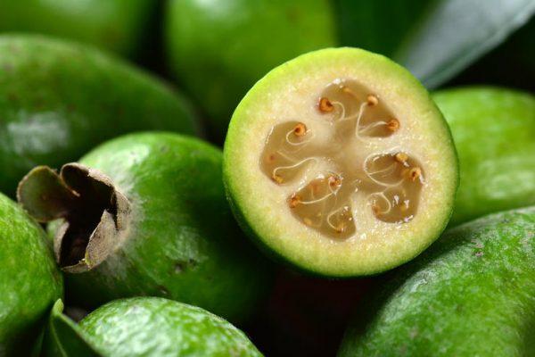 Как вырастить в квартире необыкновенно вкусный фрукт с забавным названием