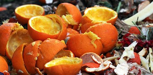 Apelsinovye korki kak udobrenie2