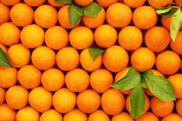 Apelsinovye korki kak udobrenie6