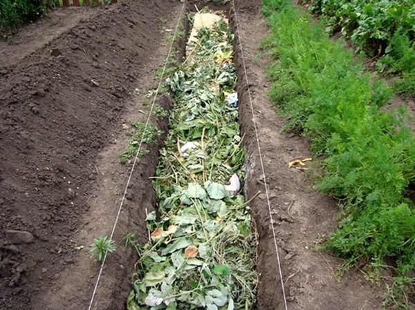 kompost na uchastke5