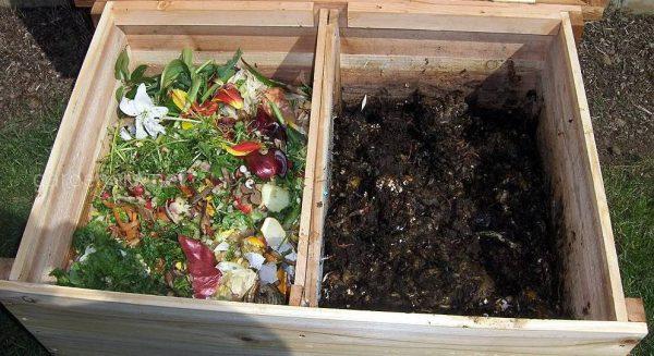 kompost za dva mesyaza2