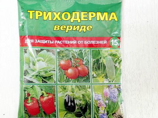 spasti pomidori 1