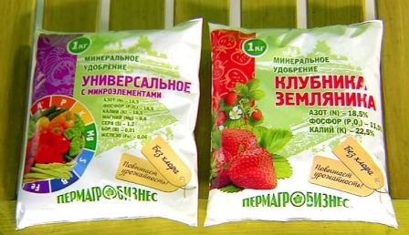 podkormka_klubniki_osenyu5