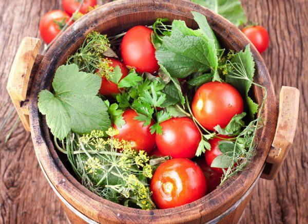 kvashennie pomidori2
